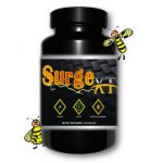 Surge-website-pic-350x350
